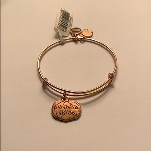 "Alex and Ani ""Pumpkin Spice"" Bangle Rose Gold"